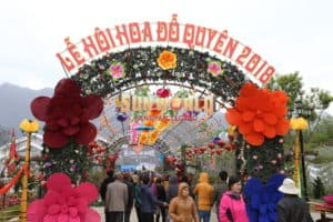 Azalea Festival 2018 – Thousands of beauties gather