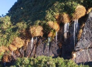 Magical frost that freezes the Fansipan in two days